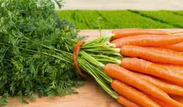 clebastien zanahoria papilla