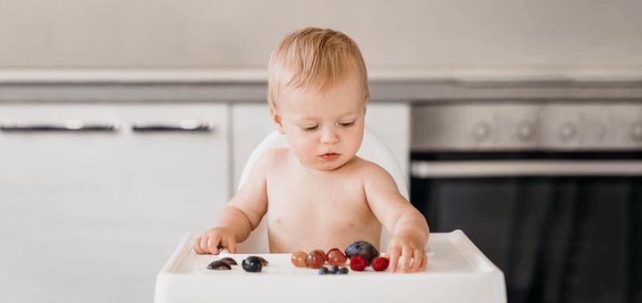 requisitos alimentacion complementaria