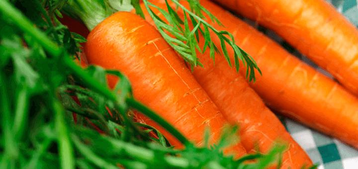 bebes zanahoria alimentacion