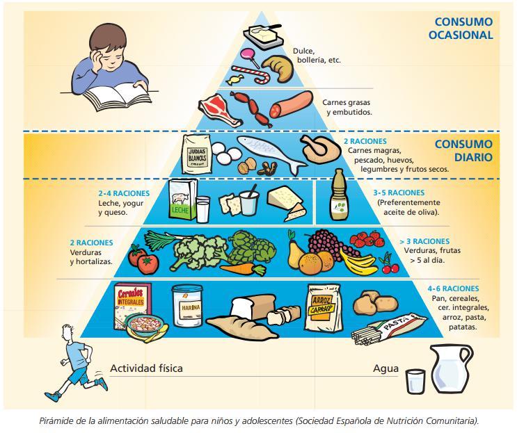piramide alimenticia como entenderla