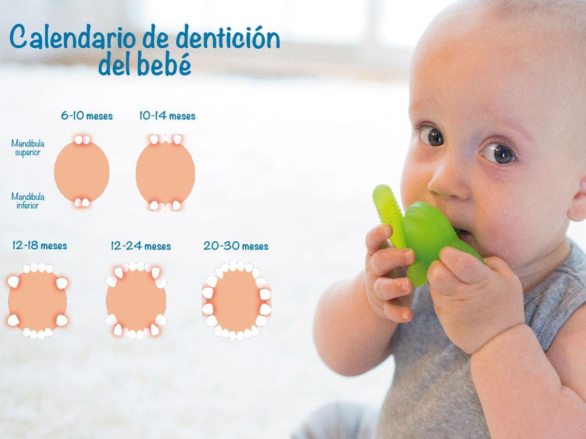 El primer diente de tu bebé: 5 cosas que los padres deben saber