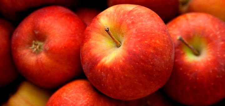 Papilla de Manzana y Avena