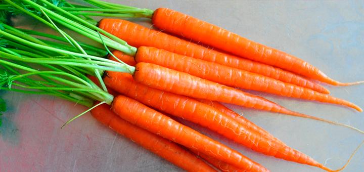 Papilla de Zanahoria y Manzana