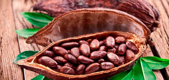 Queque de Cacao