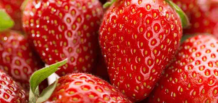 caracteristicas fresas