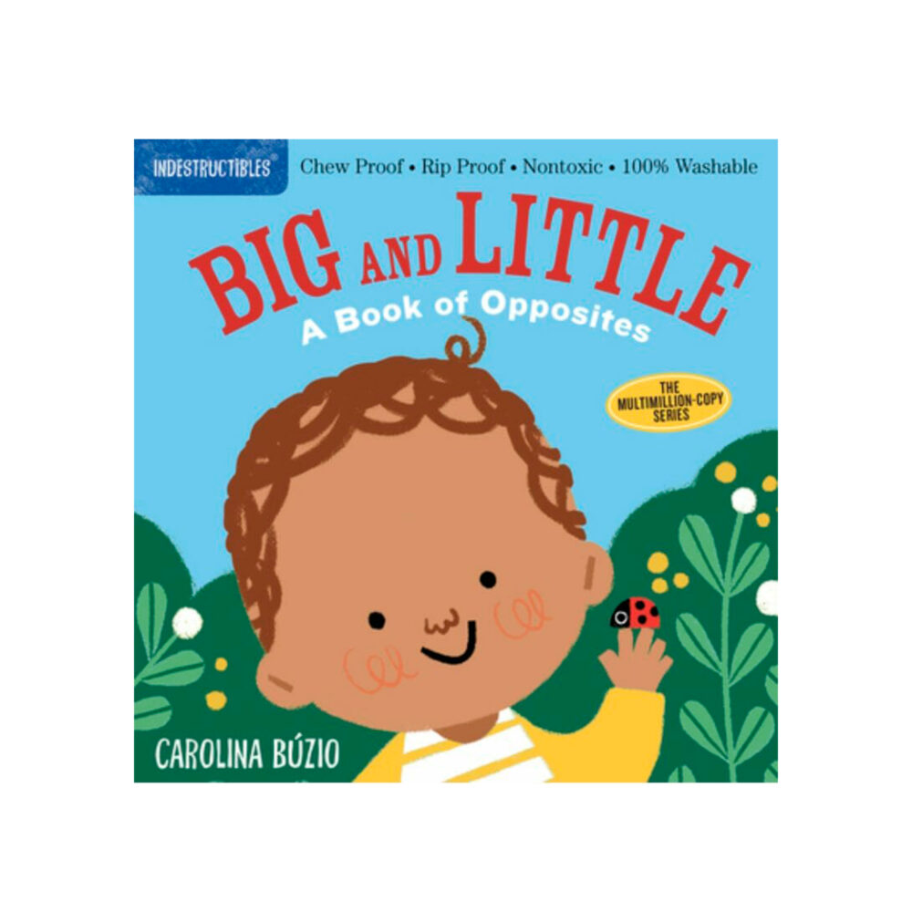 LIBRO - INDESTRUCTIBLES BIG AND LITTLE